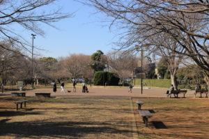F4_公園の画像