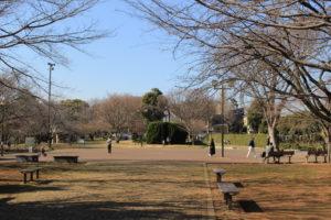 F29_公園の画像