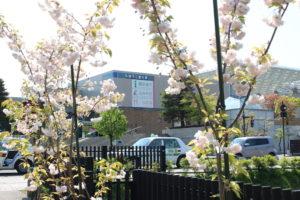 公園から見た弘前市立観光館の画像